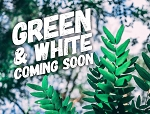 Green & White Goat Milk Soap
